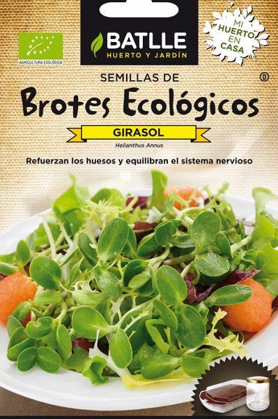 sementes biológicas de girassol, batlle