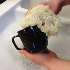 Esponja natural para lavar loiça