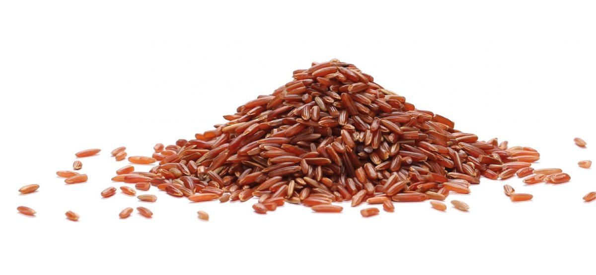 levedura arroz vermelho capsulas_Celeiro Integral